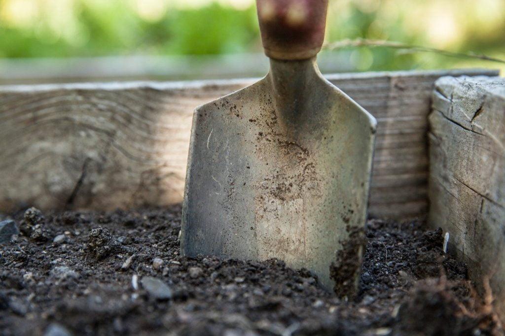 3 outils indispensables pour un désherbage efficace
