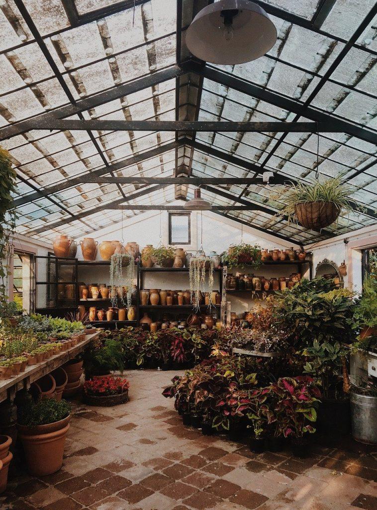 Que devez-vous savoir avant de choisir une serre pour votre jardin ?
